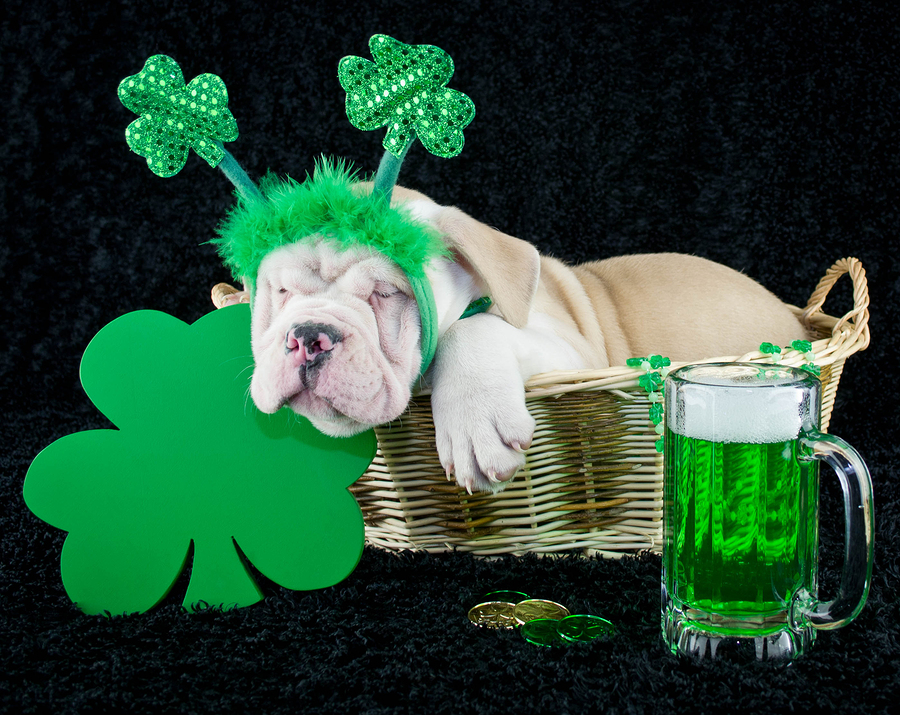 Celebrate St. Patrick's Day in Las Vegas and Henderson with these tips, including the best places on the Strip and local bars in Henderson worth trying